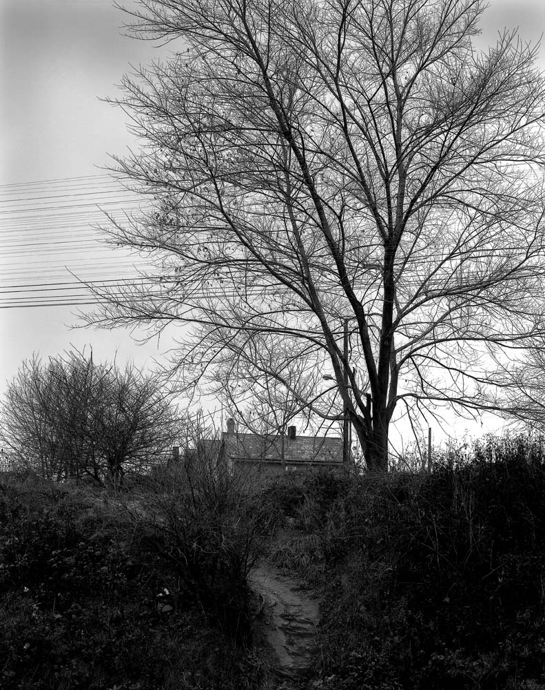 23-Tree-Path