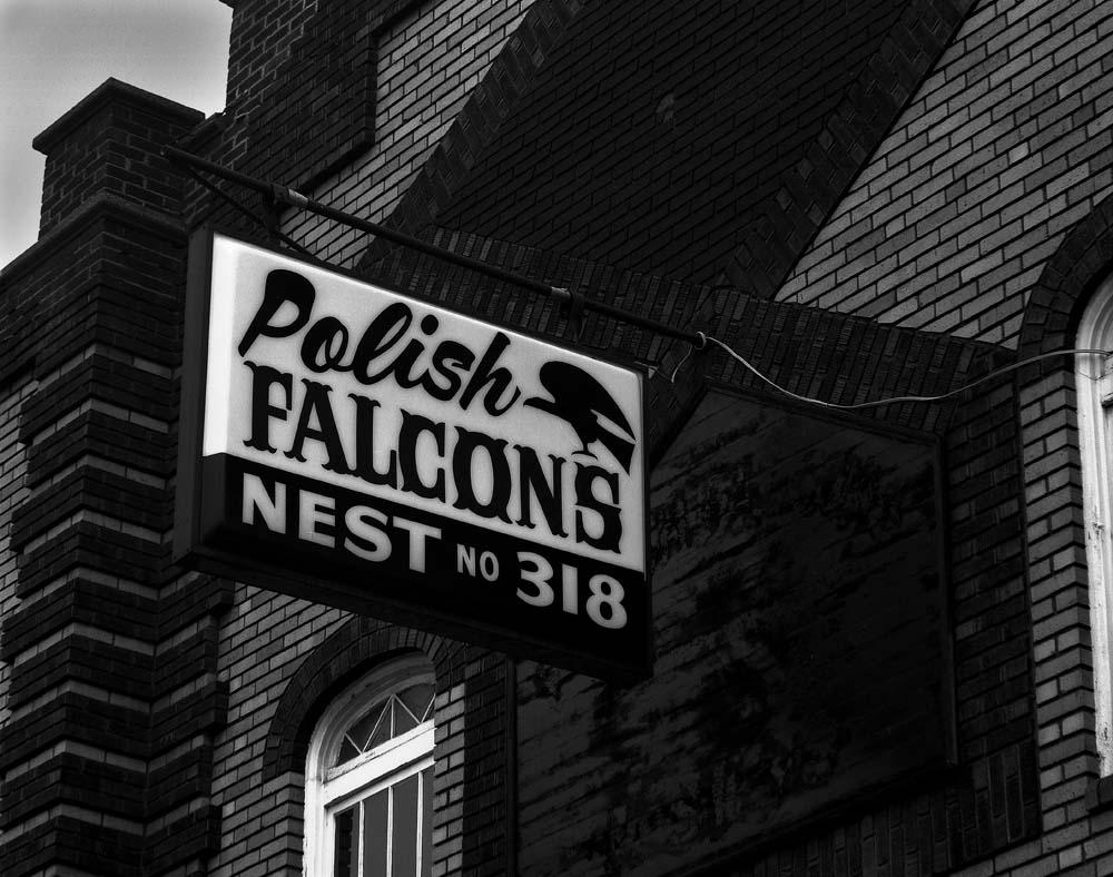42-Polish-Falcons