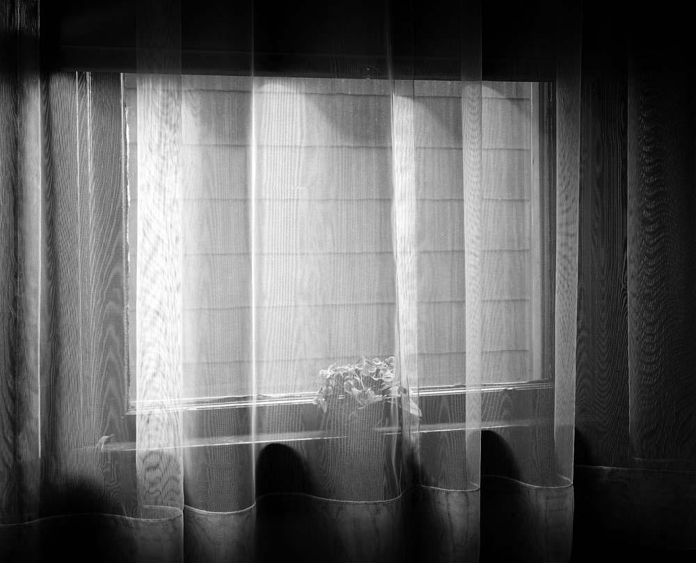 79-Window-Curtain