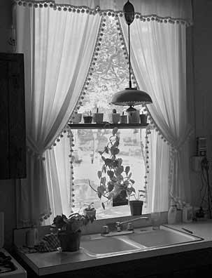 303_47-Kitchen-Window