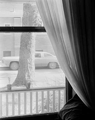 315_54-Window-_-Car