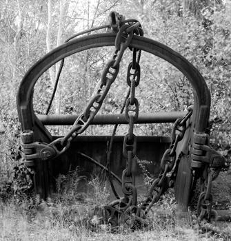335_40_Drag_Bucket_in_Woods