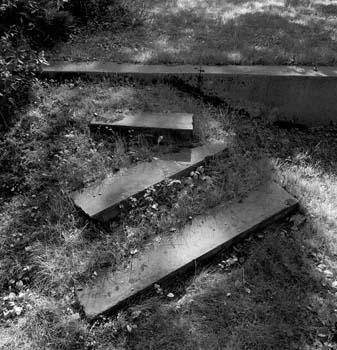 337_28_Side_Steps_in_Sunlight