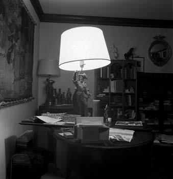339_71_Explorer_Lamp_at_Night