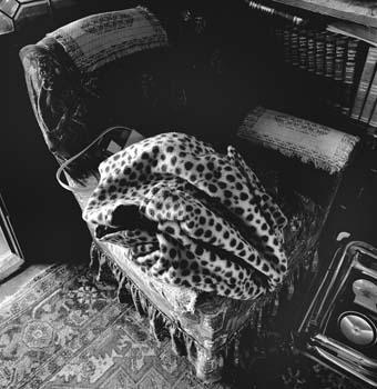 340_24_Helen_s_Leopard_Coat