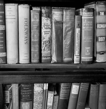 341_53_Books_in_Bookcase