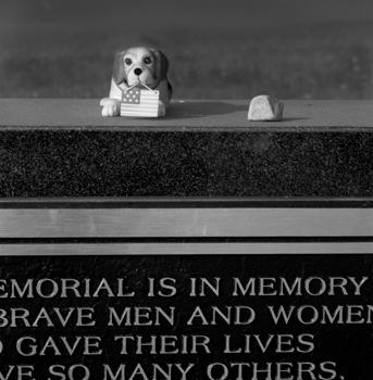 343_34-dog-and-memorial