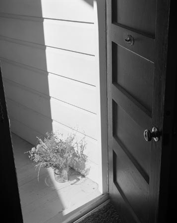 357_08_Out_Back_Door_Bk
