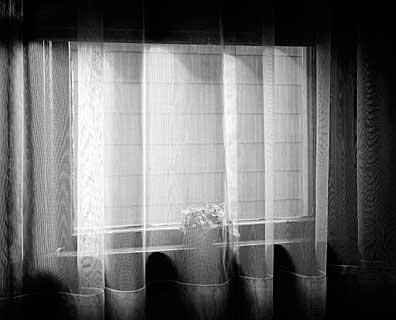 396_79-Window-Curtain