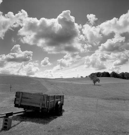 431_119_Dinsmore_Wagon_Field_10x