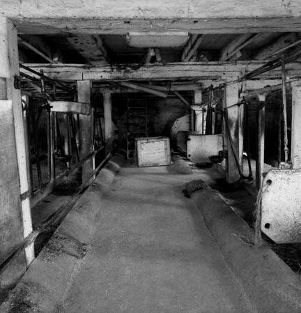 432_044_Cowden_Cow_Barn_Interior_2