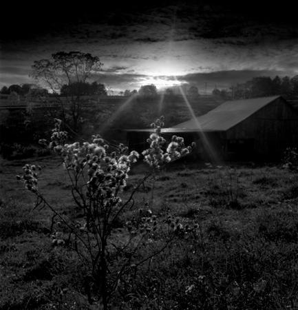433_087_Cowden_Sunset_Barn_Bush_10x