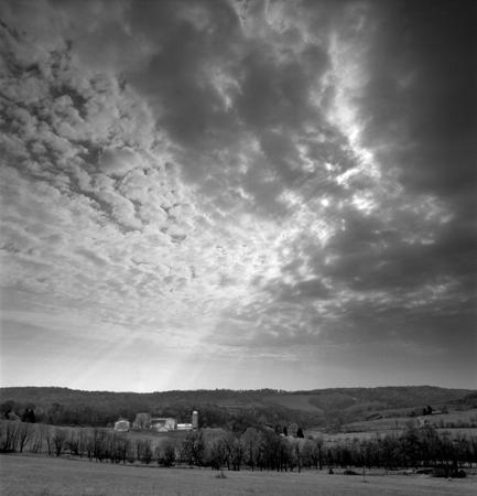 433_153_Testla_Landscape_10x