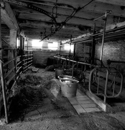 434_045_Cowden_Cow_Barn_Interior_6
