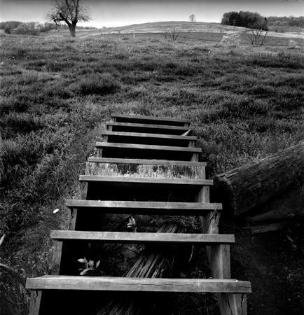 434_084_Cowden_Stairway_in_Field_10x