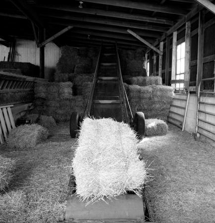434_112_Dinsmore_Barn_Interior_3_10x