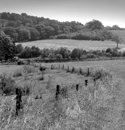 435_080_Cowden_Sepentine_Fence_Hills