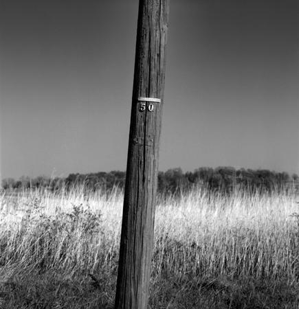 435_152_Telephone_Pole_10X