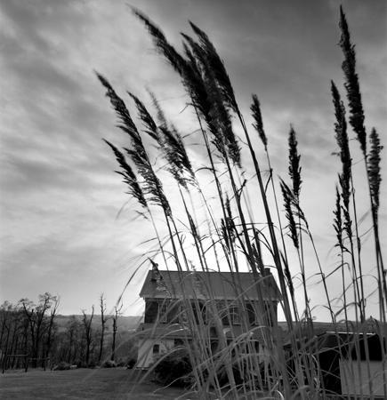 435_166_Wozick_House_Grass_10x
