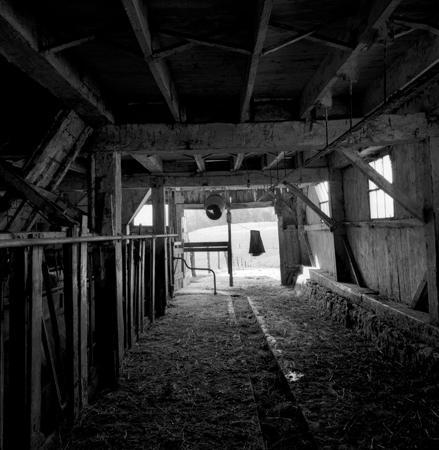 439_113_Dinsmore_Barn_Interior_4