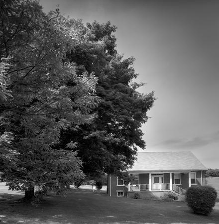 440_141_Mungai_House_Tree_10x