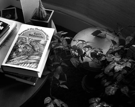 450_54_Books_Ferns_Bk